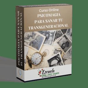 Curso Psicomagia para sanar tu transgeneracional - Diana Lopez Iriarte