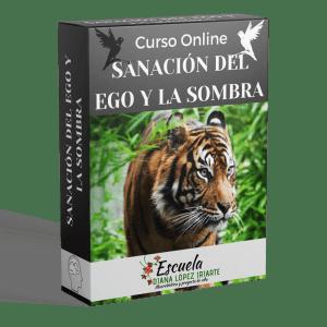 Curso Sanacion del ego y la sombra - Diana Lopez Iriarte