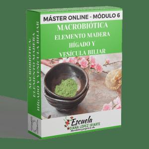 Master Macrobiotica Elemento madera, higado y vesicula biliar Modulo 6 - Diana Lopez Iriarte