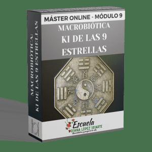 Master Macrobiotica Ki de las 9 estrellas Modulo 9 - Diana Lopez Iriarte