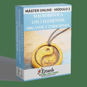 Master Macrobiotica Los 5 Elementos, organos y emociones Modulo 2 - Diana Lopez Iriarte