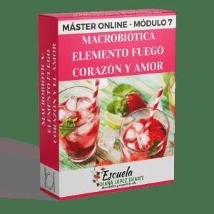 Master Macrobiotica elemento fuego, corazon y amor Modulo 7 - Diana Lopez Iriarte