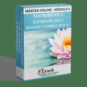 Master Macrobiotica elemento agua rinones y energia sexual Modulo 4 - Diana Lopez Iriarte