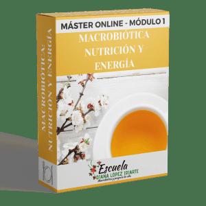 Master Macrobiotica nutricion y energia Modulo 1 - Diana Lopez Iriarte