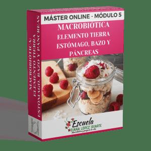 Master macrobiotica elemento tierra, estomago, bazo y pancreas Modulo 5 - Diana Lopez Iriarte